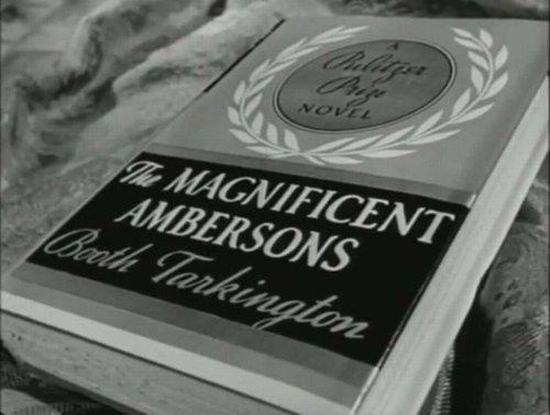 AmbersonsBook